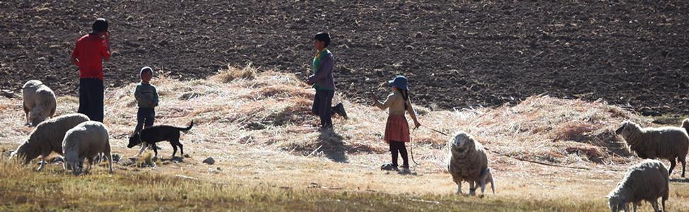 Hochland in Bolivien